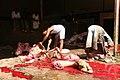 Camel slaughter.jpg