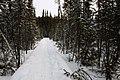 Cameron Falls Trail - Yellowknife, Canada (5325138147).jpg