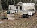 Campy Cats (2155183982).jpg