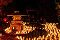 Canberra Candle Festival 2016 (203914161).jpeg