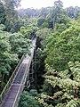 Canopy Walkway (14057069986).jpg