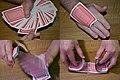 Card trick.jpg