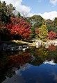 Carp pond scenery at Expo'70 Commemorative Park in Osaka, November 2017 - 013.jpg