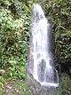 Carson Fall Mt Kinabalu.jpg