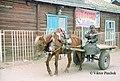 Cart (Mörön, Mongolia).jpg