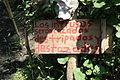 Cartel de advertencia de la Isla de las muñecas.JPG