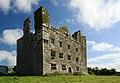 Castles of Munster, Leamaneh, Clare (2) - geograph.org.uk - 1952527.jpg