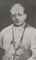 Catalogus cleri dioeceseos Brunensis - 1930 - Photo of Pius XI.png
