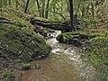 Cataract Creek just upstream of Laurel Dell. - panoramio.jpg
