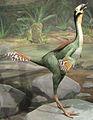 Caudipteryx Hendrickx.jpg