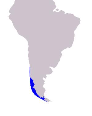 Chilean dolphin - Image: Cetacea range map Chilean Dolphin