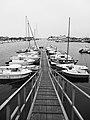 Cherbourg - panoramio.jpg