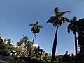Chhatrapati Shivaji Maharaj Vastu Sangrahalaya grounds.jpg