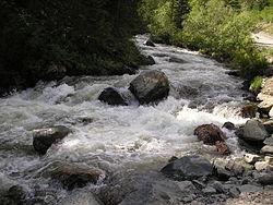 Chibitka River near Krasnye Vorota.jpg