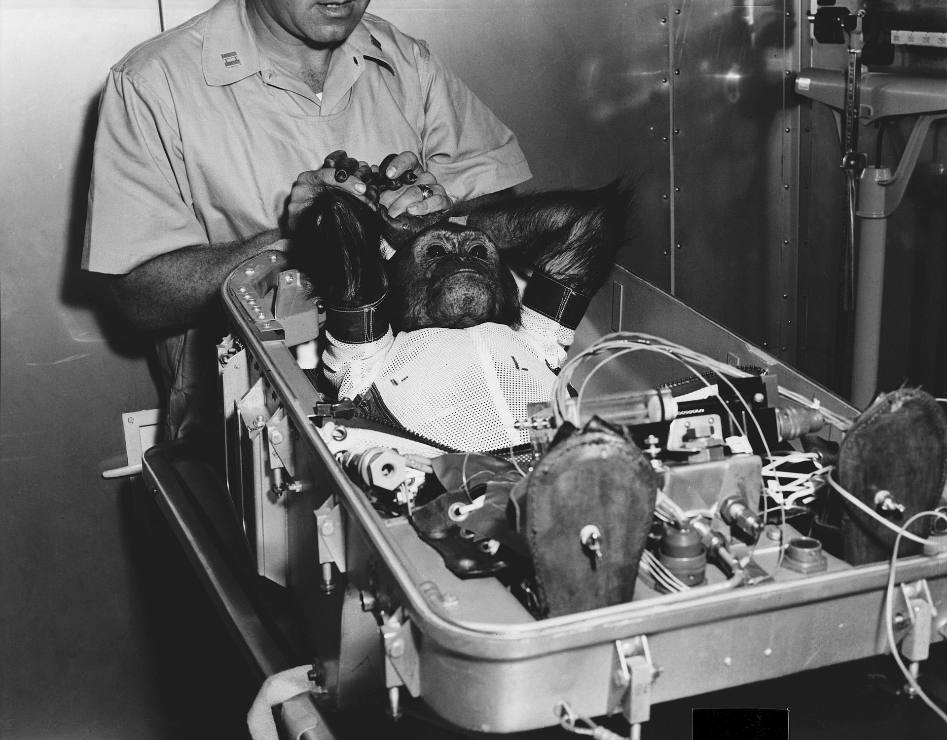 Enos in his flight couch, being prepared for insertion into his Mercury capsule