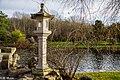 Chinese Lantern (153358685).jpeg