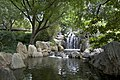Chinese garden at Darling Harbour - panoramio.jpg