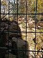Chinesischer Goral (Zoo Dresden).jpg