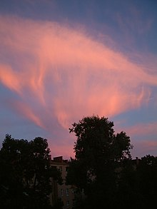 A picture of contorted cirrus cloud shining red in the sunset. Fall streaks (like long thin streamers) descend from the clouds.