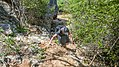 Climb down from Christoffel Park cave (31200670925).jpg