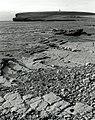 Coast at Mar Wick - geograph.org.uk - 108744.jpg