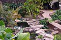 Colección Palmetum de Santa Cruz de Tenerife 09.JPG