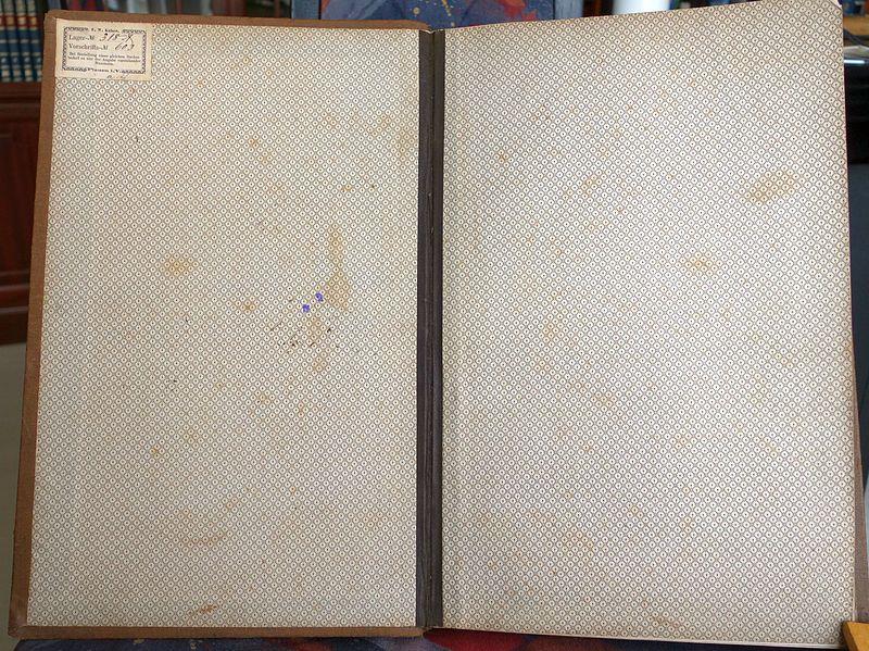 File:Conto Haupt Buch von Naom Dedo, Rauchwarenhändler in Leipzig (1872-1889)-01.jpg
