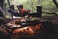 Cooking in Nature (Unsplash).jpg