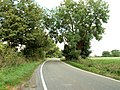 Country road near Great Canfield, Essex - geograph.org.uk - 231823.jpg