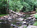 Crabtree Creek Mill Trail Umstead SP 3345 (5893910769) (2).jpg