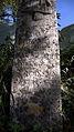 Croix st pierre détail.JPEG