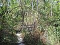 Crowleys Ridge State Park Dancing Rabbit Trail Paragould AR 17.jpg