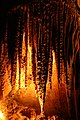 Cueva del Rey Salomon-Tasmania-Australia10.JPG