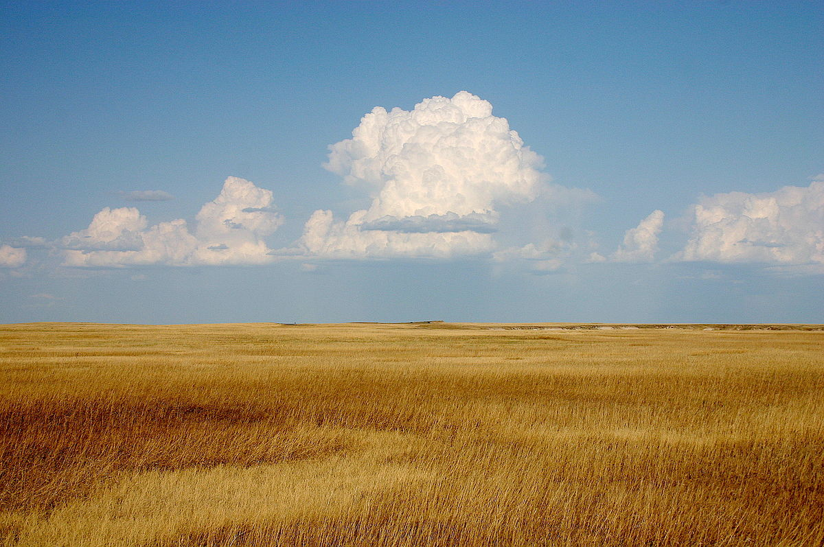 Prairie wikipedia Define contemporary country