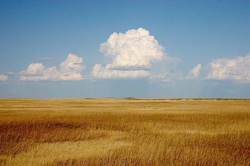 Cumulus clouds hover above a yellowish prairie at Badlands National Park, South Dakota, native lands to the Sioux. Cumulus Clouds over Yellow Prairie2.jpg