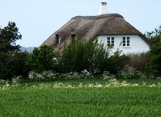 Danish thatched-roof house 01
