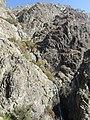 Darband - panoramio (1).jpg