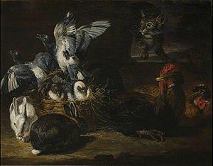 David de Coninck - Poultry and cat