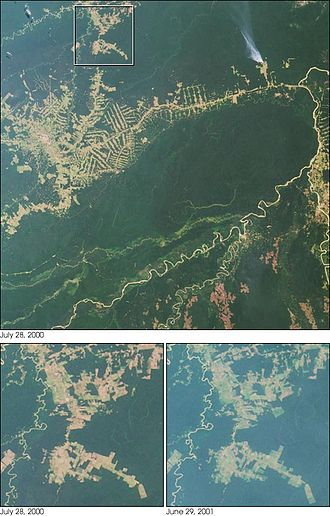Deforestation in Brazil - A NASA satellite observation of deforestation near Rio Branco in Brazil observed July 2000.