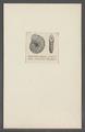 Dendritina elegans - - Print - Iconographia Zoologica - Special Collections University of Amsterdam - UBAINV0274 113 02 0009.tif