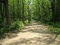 Des Plaines River Trail Lake County Illinois.jpg