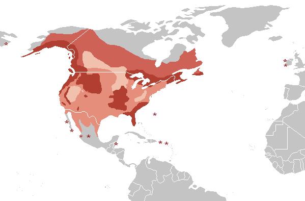Distribution H. leucocephalus