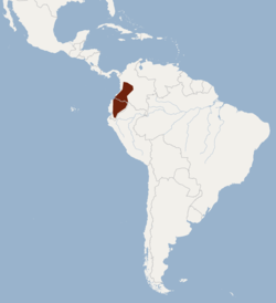Distribution of Sturnira ludovici.png