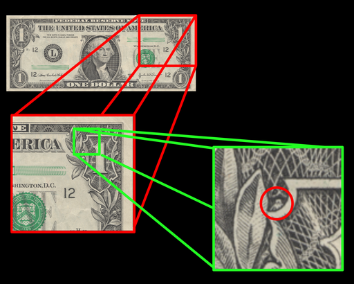Dollar Illuminatus