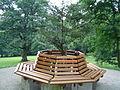 Donndorf - Fantaisie Schlosspark - Sitzbank (03.08.2007).jpg