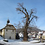 Dorflinde Haselbach, 2.jpg
