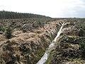 Drainage ditch, Coed Nant-yr-hwch - geograph.org.uk - 987673.jpg