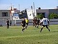 Durante el partido - panoramio.jpg