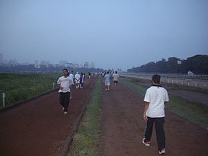 The race-course is used by joggers and walkers...