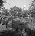 Een Nederlandse militair steekt een beek of sloot over via een boomstam gedekt…, Bestanddeelnr 15825.jpg